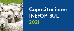 Capacitaciones Inefop - SUL 2021